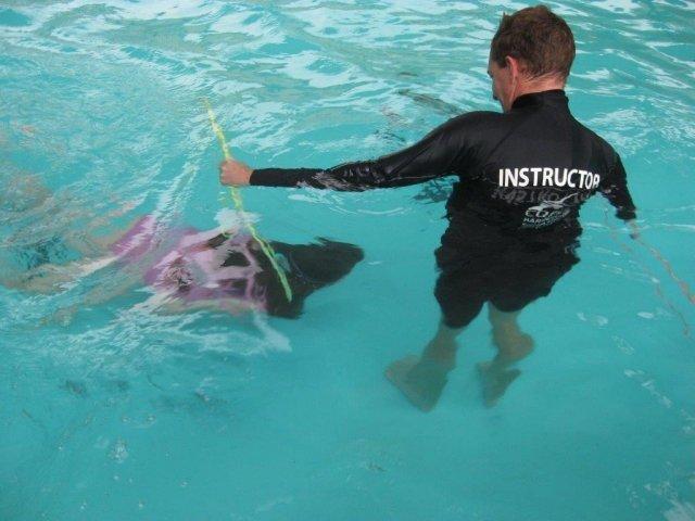 swim-lessons-063